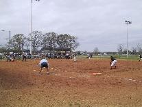 Softball Players on a Field